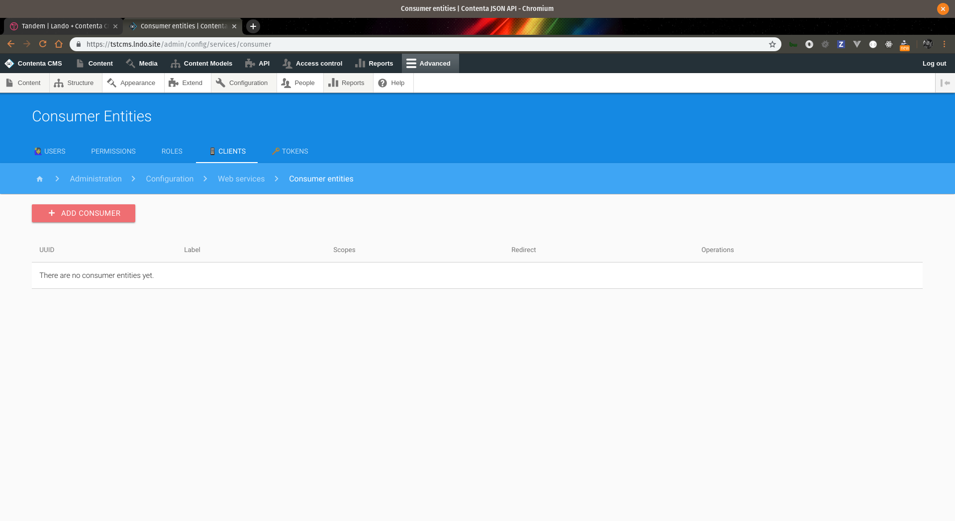 Screeenshot of add consumer configuration page